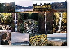 Oregon Collage From Sept 11 Pics Acrylic Print by Maureen E Ritter