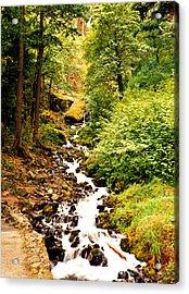 Acrylic Print featuring the photograph Oregon Hobbit House by Maureen E Ritter