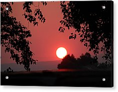Acrylic Print featuring the photograph Oregon Sunset by Jo Sheehan