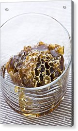 Organic Honey Comb Acrylic Print by Frank Tschakert