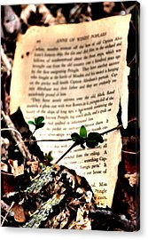 Organic Page Acrylic Print by Karen Scovill