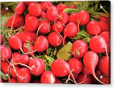 Organic Radishes Acrylic Print by Wendy Connett