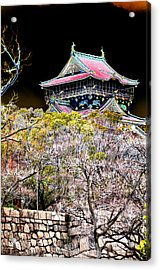 Osaka Temple Acrylic Print by Allan Rothman