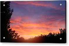 Out My Backdoor  Acrylic Print by Tamara Bettencourt