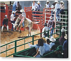Out Of The Chute Acrylic Print by Katherine Uitz