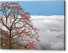 Out Of The Clouds Acrylic Print by Sonny Marcyan