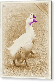 Out On The Town Acrylic Print by Juliana  Blessington