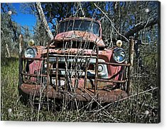Acrylic Print featuring the photograph Out To Pasture by Cheri Randolph