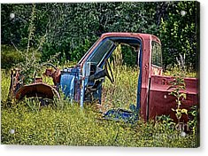 Out To Pasture Acrylic Print by Ken Williams