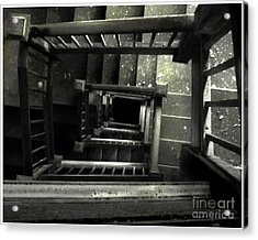 Outer Darkness  Acrylic Print by Tammy Cantrell