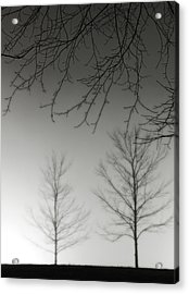 Outstretched Limbs Acrylic Print