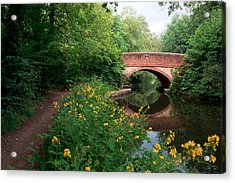 Over The Canal Acrylic Print by Shirley Mitchell