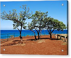 Acrylic Print featuring the photograph Overlook In Maui by Caroline Stella