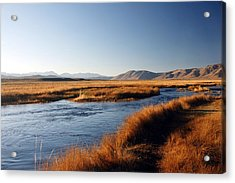 Owens River Acrylic Print by Michael Courtney