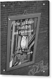 Owl And Thistle Irish Pub Acrylic Print