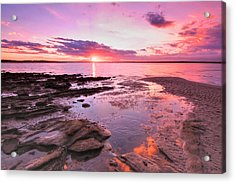 Acrylic Print featuring the photograph Oyster Cove Sunset by Paul Svensen