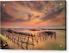 Oyster Racks Acrylic Print by Taiwan Nans0410