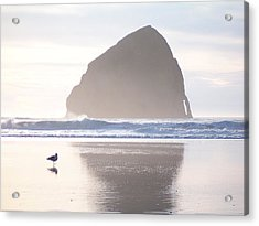 Pacific City Beach Reflected Acrylic Print by Peter Mooyman