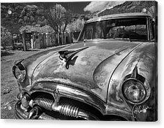 Packard Acrylic Print by Christine Hauber