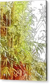 Painted Bamboo Acrylic Print by Terry Cork