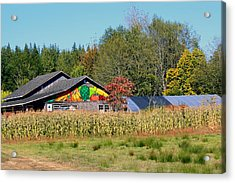 Painted Barn Acrylic Print by Chris Anderson