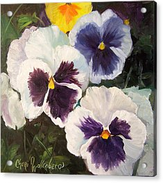 Painting Of Pansies Acrylic Print by Cheri Wollenberg