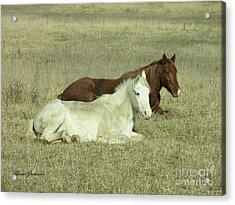 Acrylic Print featuring the photograph Pair Of Horses by Yumi Johnson