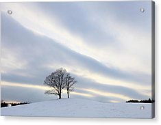 Pair Of Trees On Hill At Sunset Acrylic Print by I am happy taking photographs.