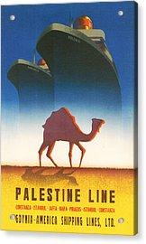 Palestine Line Acrylic Print