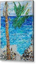 Palm 06 Acrylic Print by Bradley Bishko