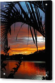 Palm Framed Sunset Acrylic Print by Kaye Menner