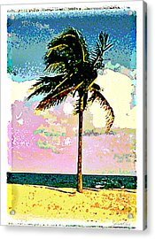 Palm One Acrylic Print by Linda Olsen