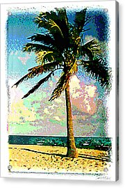 Palm Three Acrylic Print by Linda Olsen