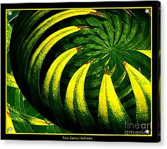 Palm Tree Abstract Acrylic Print by Rose Santuci-Sofranko