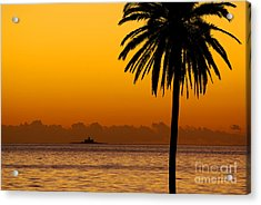 Palm Tree Sunset Acrylic Print by Carlos Caetano