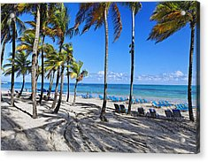 Palm Trees Shaded Beach Acrylic Print by George Oze