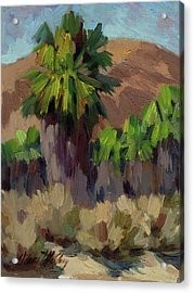 Palms At San Andreas Acrylic Print