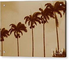 Palms Acrylic Print by Barbara Marcus