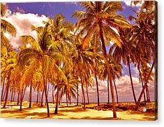Palms On Half Moon Caye II  Acrylic Print by Valerie Rosen