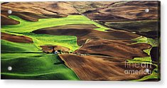 Palouse Farm Country Acrylic Print by Dennis Flaherty and Photo Researchers