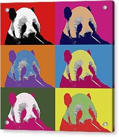 Panda Pop Art 2 Acrylic Print