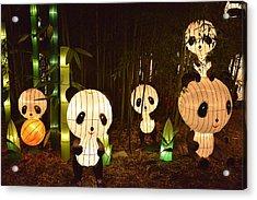 Pandamonium Acrylic Print by William Fields