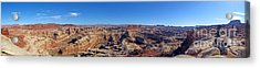 Panoramic Maze Acrylic Print by Scotts Scapes