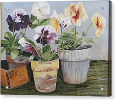 Acrylic Print featuring the painting Pansies by Cindy Plutnicki