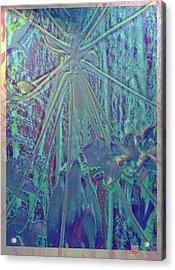 Papaya Madness Acrylic Print by Charles Hansen