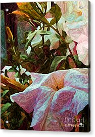 Paper And More Acrylic Print by Steven Lebron Langston