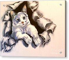 Paper Tiger Acrylic Print by Susan A Becker