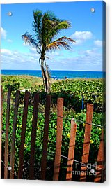 Paradise Beyond The Fence Line Acrylic Print by Linda Mesibov