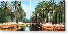 Paradise Canal - Basrah Iraq Acrylic Print by Unknown