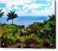 Paradise Found Acrylic Print by Debbie Karnes
